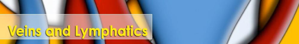Veins&Lymphatics banner